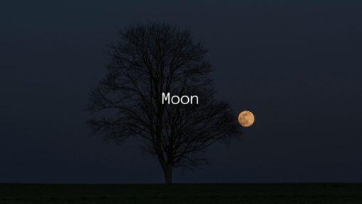 Moonのジャケット