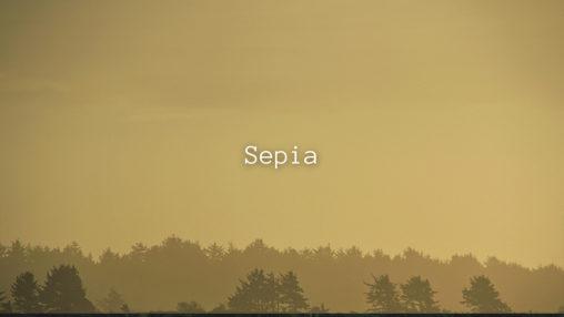Sepiaのサムネイル
