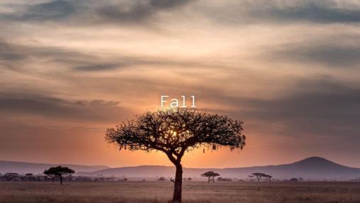 Fallのジャケット